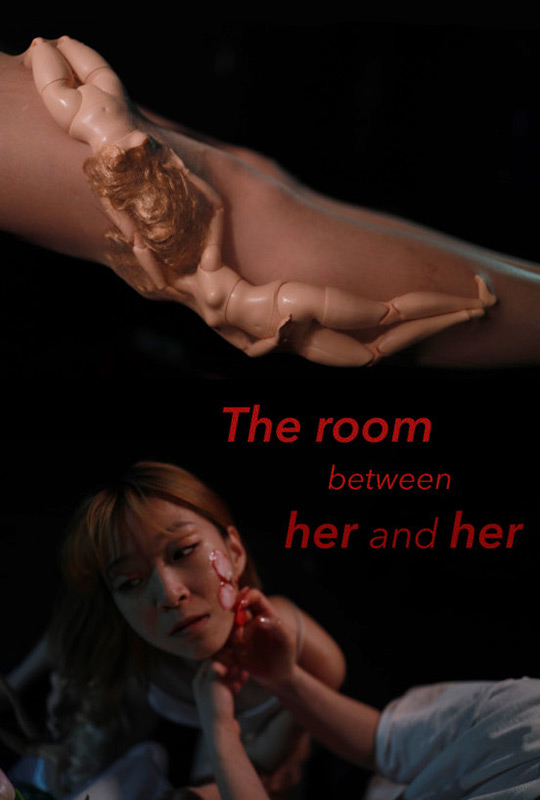 The Room Between Her and Her film poster